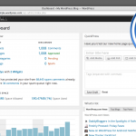 Wordpress Administrator Dashboard