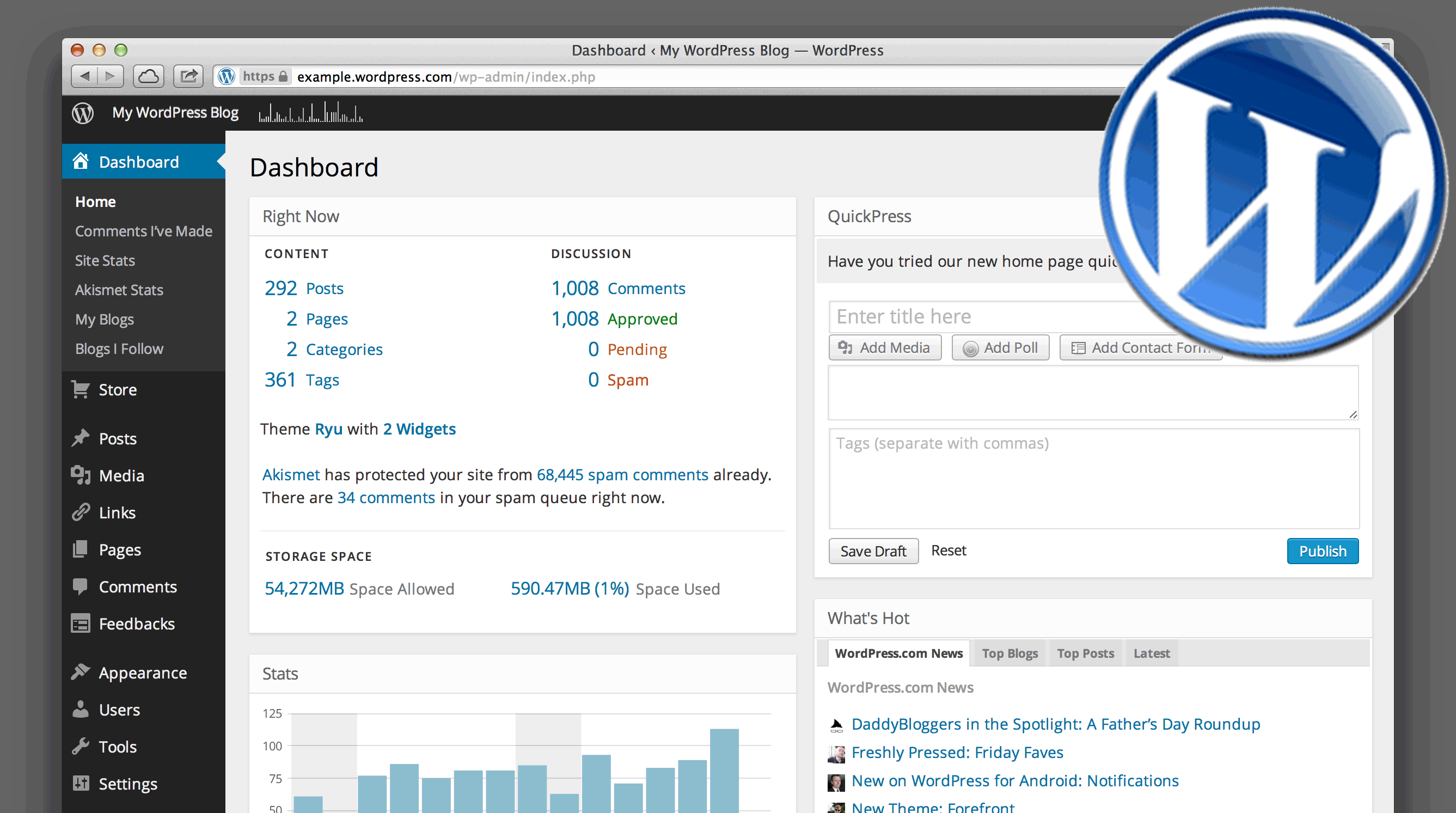 overview of your new wordpress site